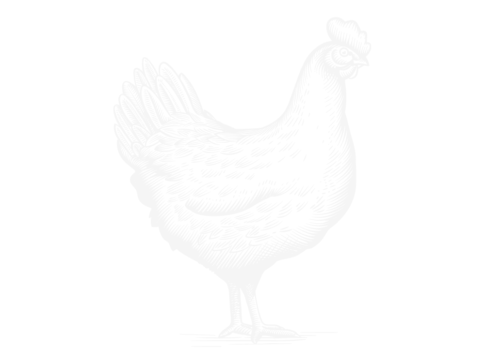 Rooster Farm Icon